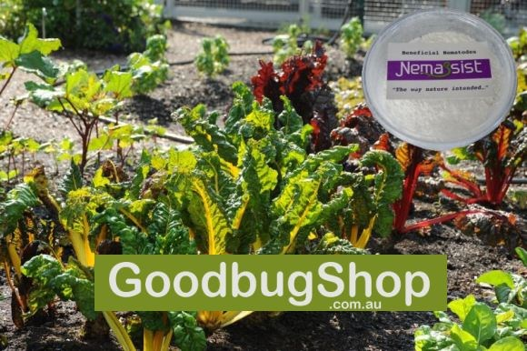 The Goodbug Shop Showcasing the Nemassist Range